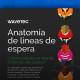 website_es